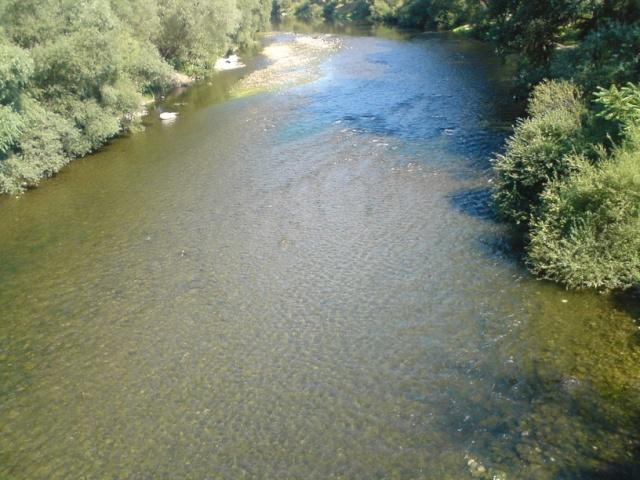 Vilinska reka - Nišava - Page 2 Dsc00510