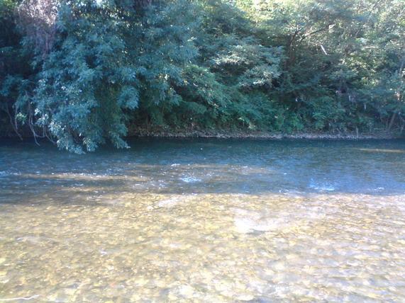 Vilinska reka - Nišava - Page 2 Vilina10