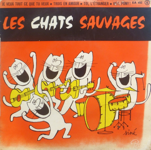 les chats sauvages P1070410