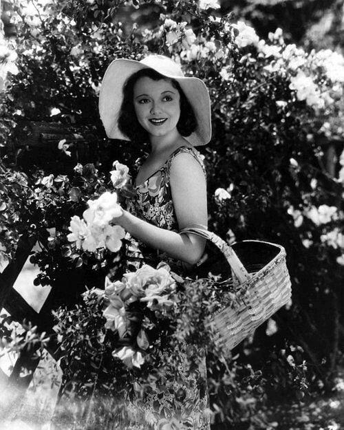 Janet Gaynor (1906-1984) Janet_10