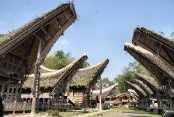 EO Metterdaad gaat Toraja's in Sulawesi steunen 03_eom10