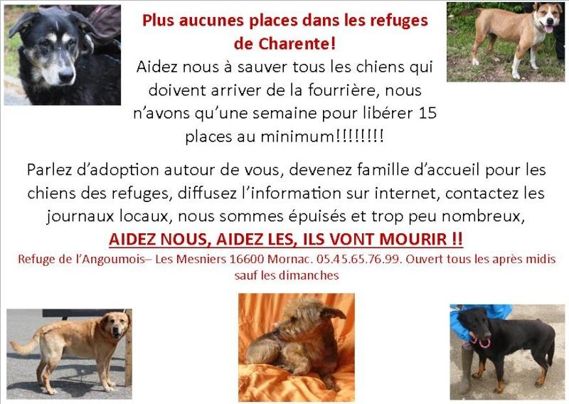 Bonjour de Charente Alerte10