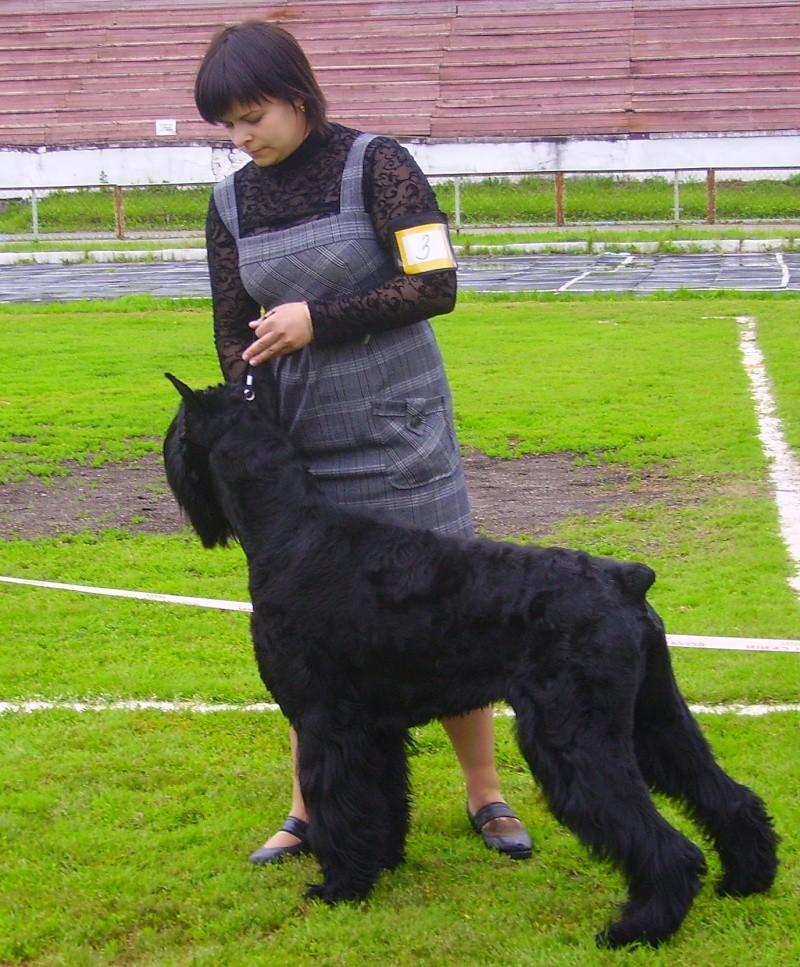 Pleskov's INDIGO 20061010