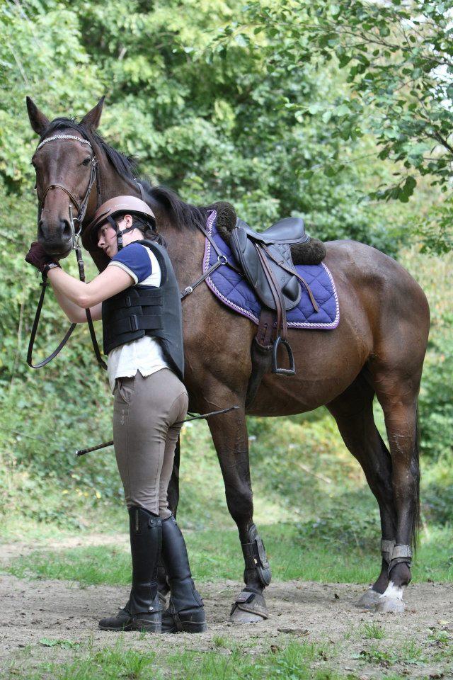 Cherche cheval de loisirs Sambo_11