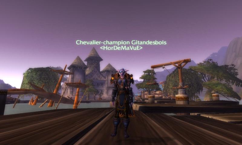 Screens - de la guilde HorDeMaVuE en 2011 !  Wowscr12