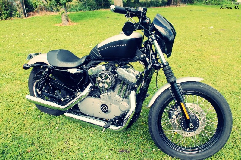 Nightster 2009 esprit chopper old style Img_1210