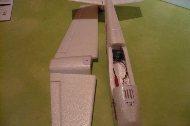 Falco300de chez Scorpio ! P1020516