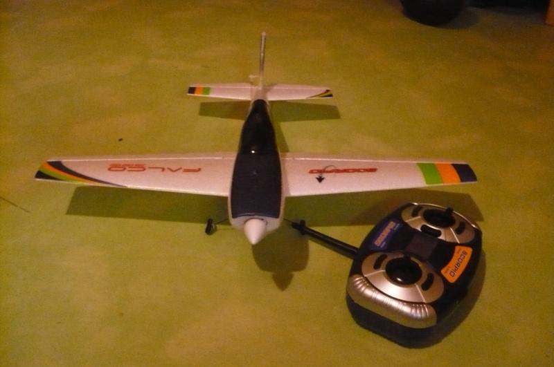 Falco300de chez Scorpio ! P1020519