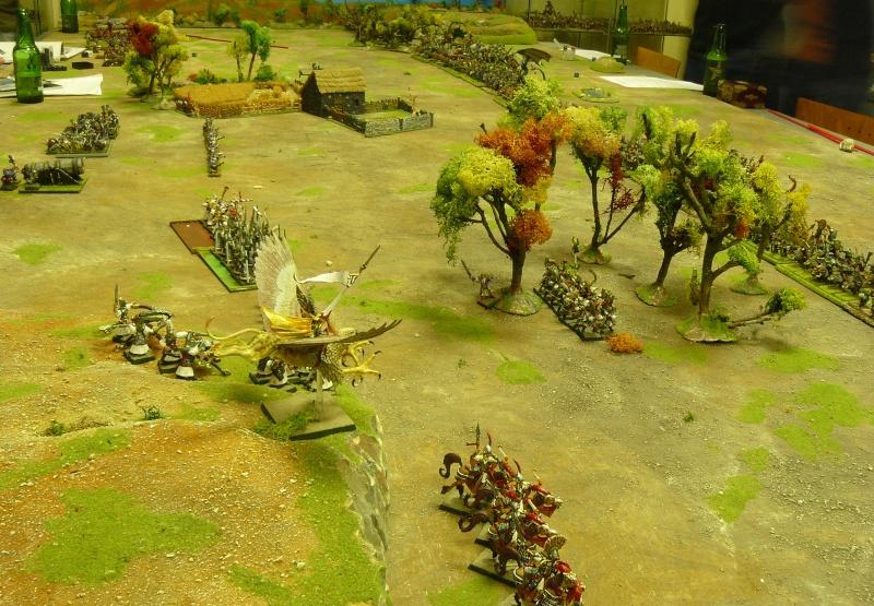 Warhammer Fantasy, Galerie de Batailles - Page 3 P1200329