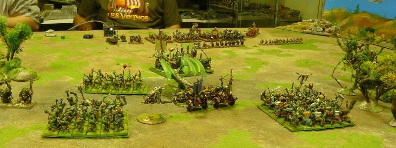 Warhammer Fantasy, Galerie de Batailles - Page 3 P1200331