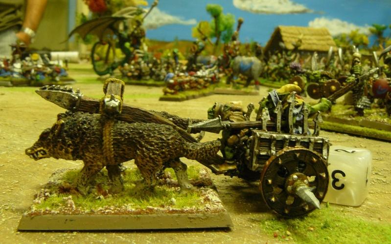Warhammer Fantasy, Galerie de Batailles - Page 3 P1200346