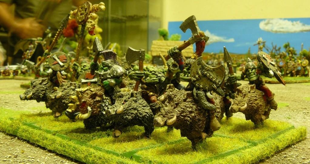 Warhammer Fantasy, Galerie de Batailles - Page 3 P1200347