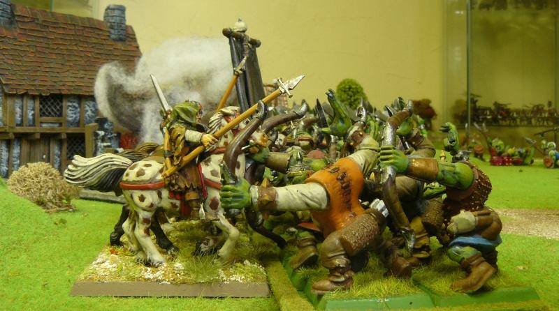 Warhammer Fantasy, Galerie de Batailles - Page 3 P1200548