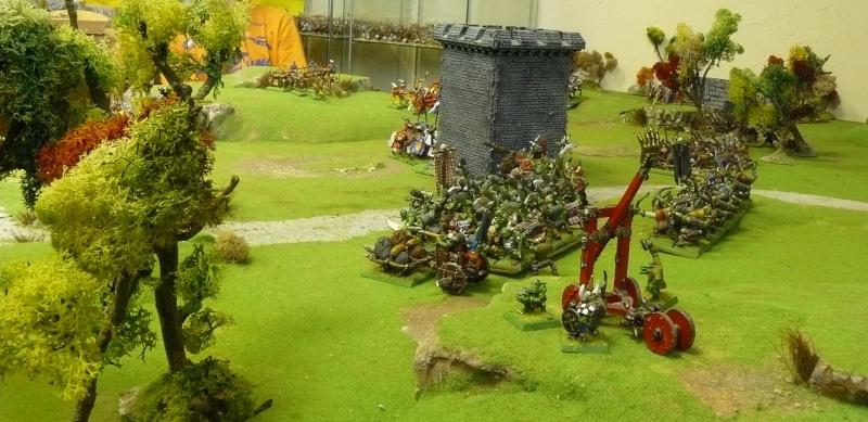 Warhammer Fantasy, Galerie de Batailles - Page 3 P1200717