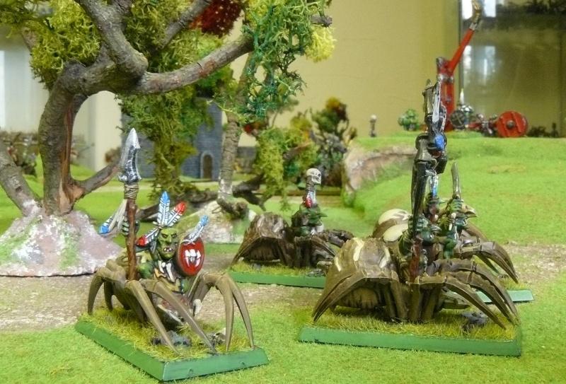 Warhammer Fantasy, Galerie de Batailles - Page 3 P1200724