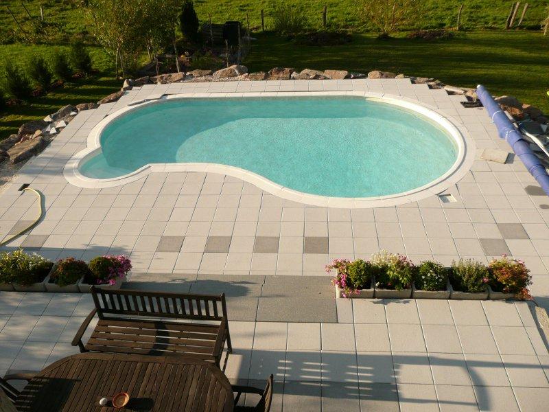recherche nom de plante verte ou arbuste pour decorer autour de la piscine Bacs10