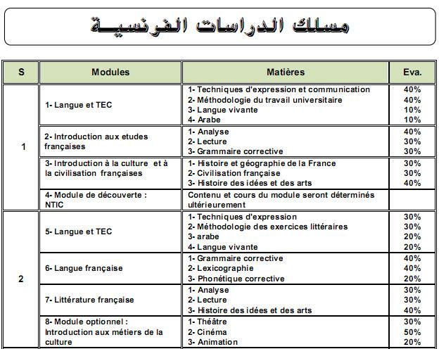 الدراسات الفرنسية Études Françaises Franca10