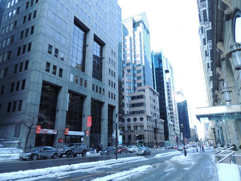 TR Montreal + New York du 19 Janvier au O6 Février 2O13 - Page 5 Dscn0625