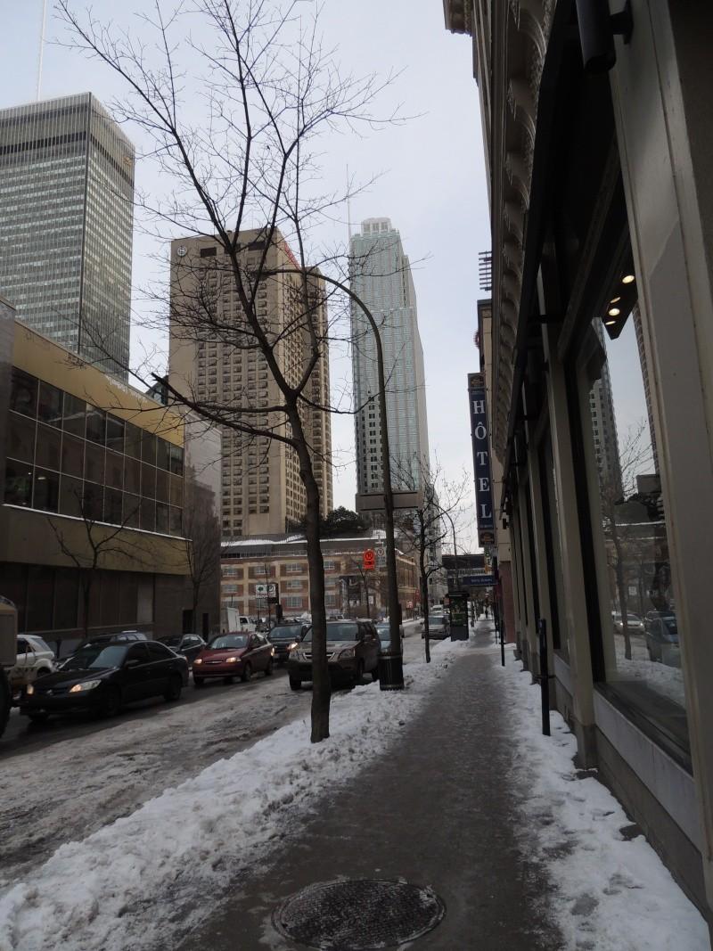 TR Montreal + New York du 19 Janvier au O6 Février 2O13 - Page 5 Dscn0630
