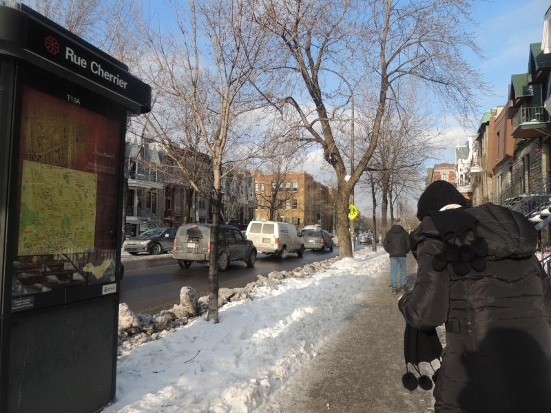 TR Montreal + New York du 19 Janvier au O6 Février 2O13 - Page 5 Dscn0643