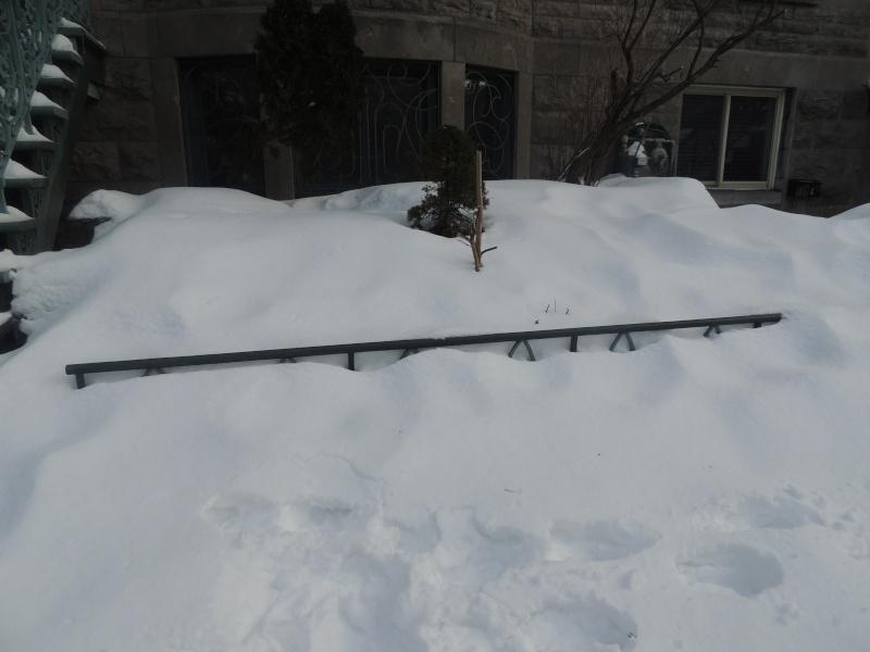 TR Montreal + New York du 19 Janvier au O6 Février 2O13 - Page 5 Dscn0710
