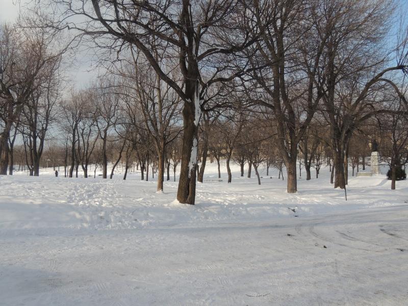 TR Montreal + New York du 19 Janvier au O6 Février 2O13 - Page 5 Dscn0712