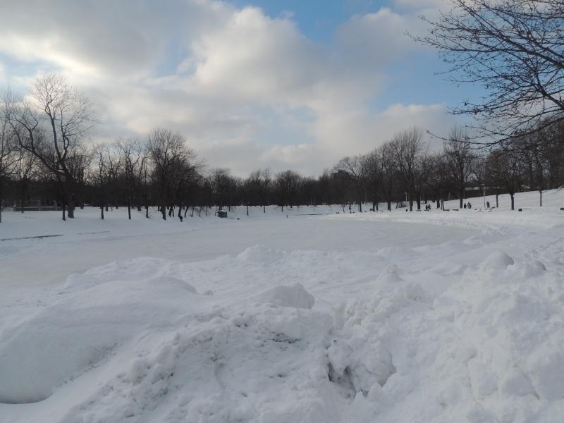 TR Montreal + New York du 19 Janvier au O6 Février 2O13 - Page 5 Dscn0715