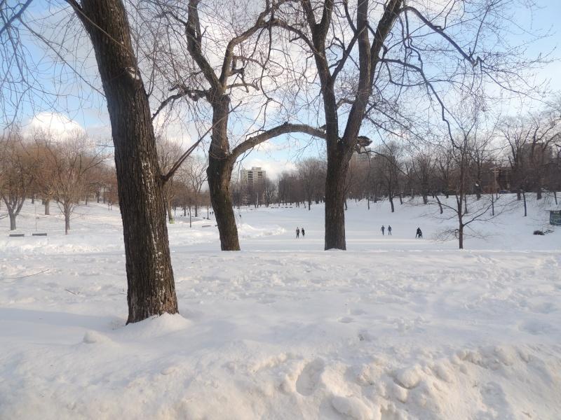 TR Montreal + New York du 19 Janvier au O6 Février 2O13 - Page 5 Dscn0719