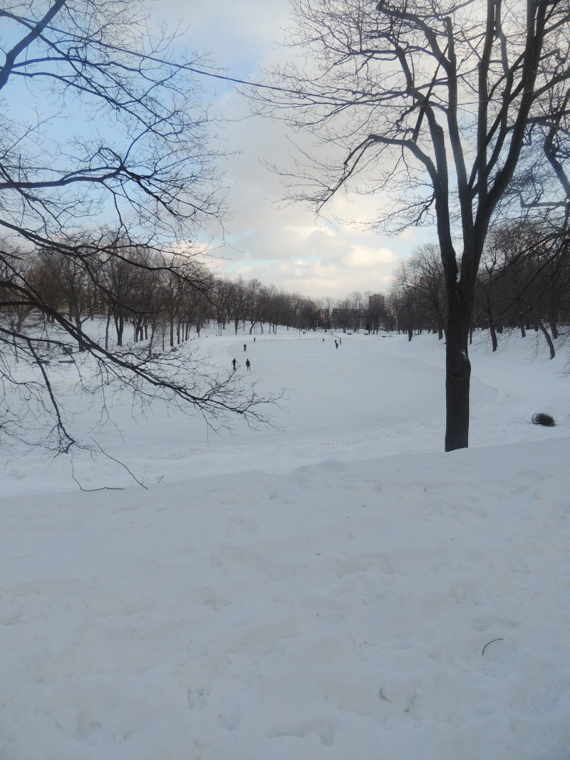 TR Montreal + New York du 19 Janvier au O6 Février 2O13 - Page 5 Dscn0720