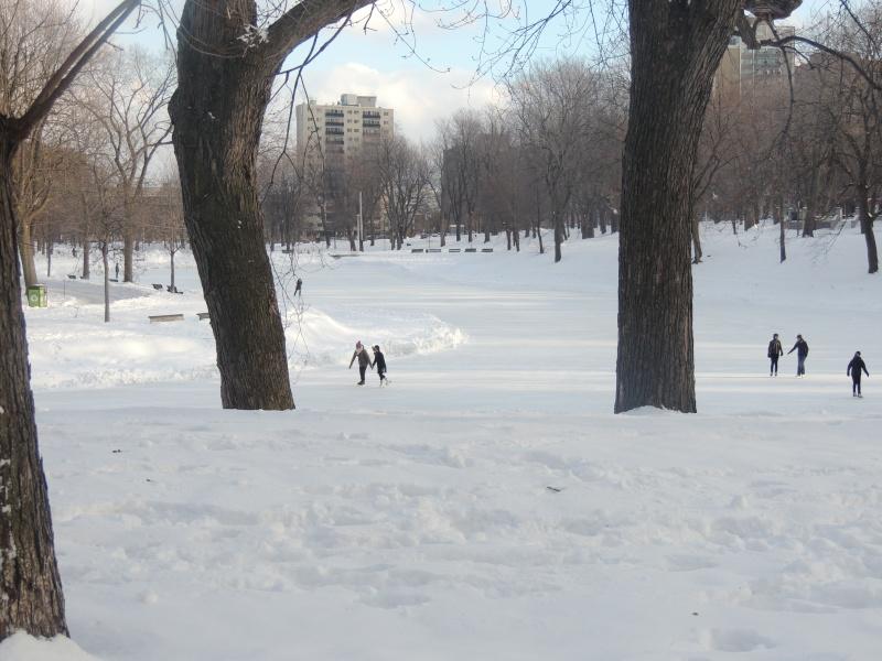 TR Montreal + New York du 19 Janvier au O6 Février 2O13 - Page 5 Dscn0721