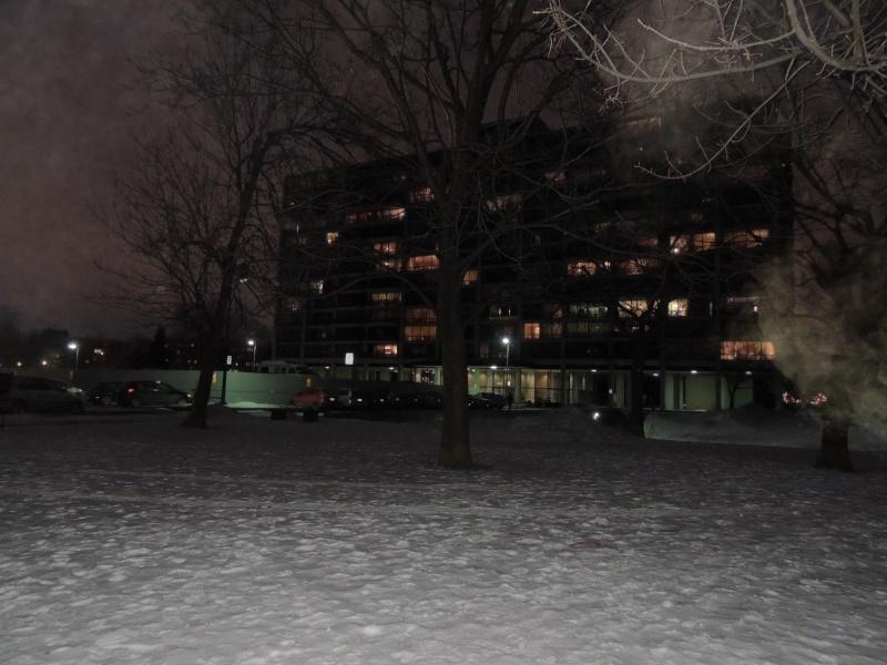 TR Montreal + New York du 19 Janvier au O6 Février 2O13 - Page 6 Dscn1026