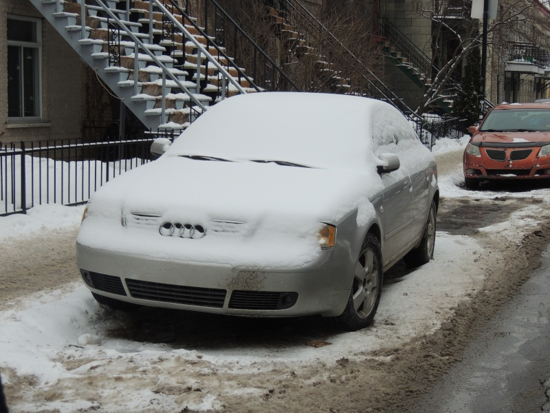 TR Montreal + New York du 19 Janvier au O6 Février 2O13 - Page 8 Dscn1244