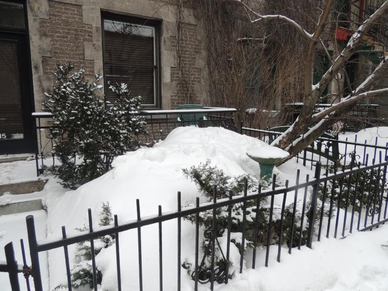 TR Montreal + New York du 19 Janvier au O6 Février 2O13 - Page 8 Dscn1246