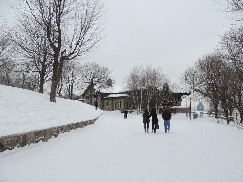TR Montreal + New York du 19 Janvier au O6 Février 2O13 - Page 8 Dscn1256