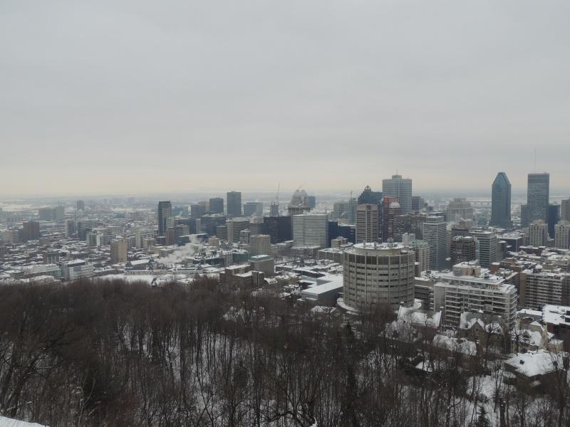 TR Montreal + New York du 19 Janvier au O6 Février 2O13 - Page 8 Dscn1260