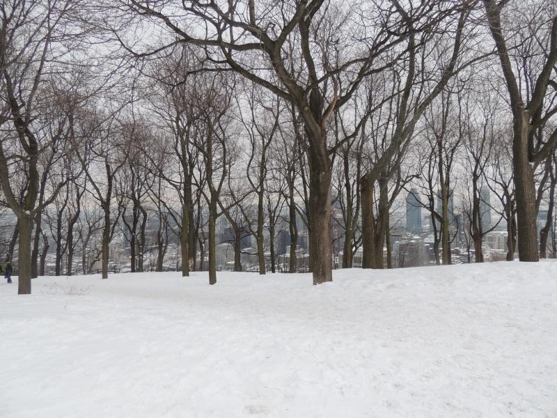 TR Montreal + New York du 19 Janvier au O6 Février 2O13 - Page 8 Dscn1282