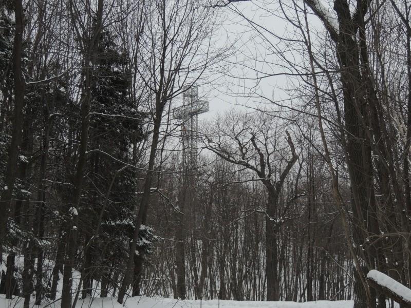 TR Montreal + New York du 19 Janvier au O6 Février 2O13 - Page 8 Dscn1311