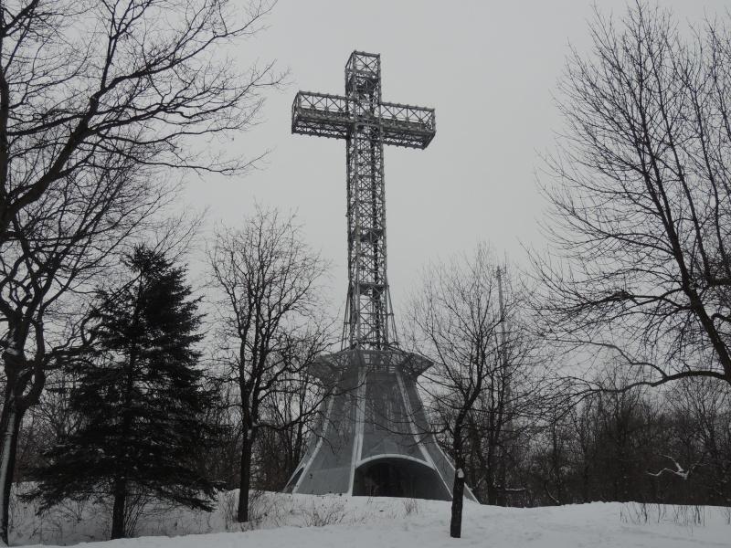 TR Montreal + New York du 19 Janvier au O6 Février 2O13 - Page 8 Dscn1313
