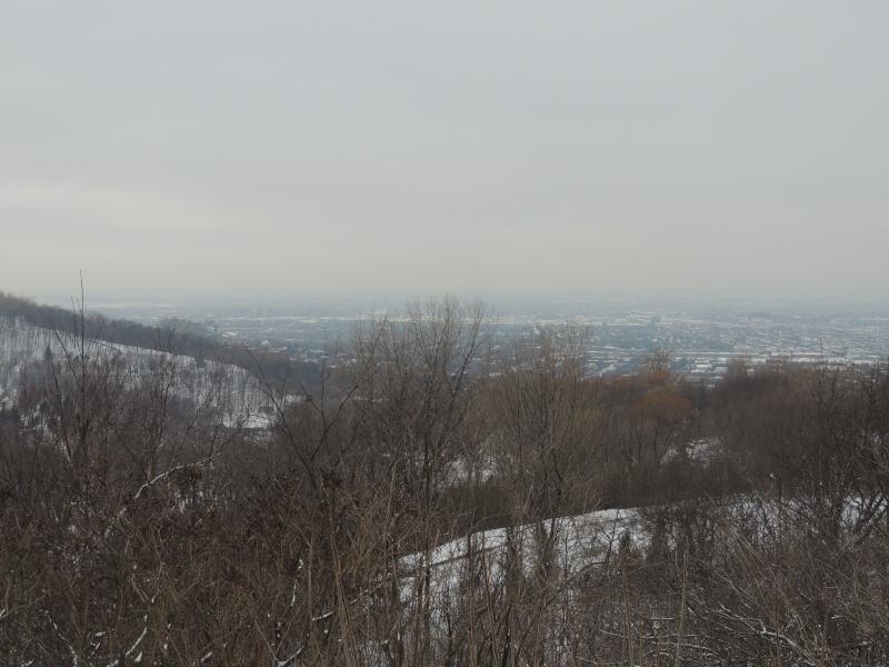 TR Montreal + New York du 19 Janvier au O6 Février 2O13 - Page 8 Dscn1315