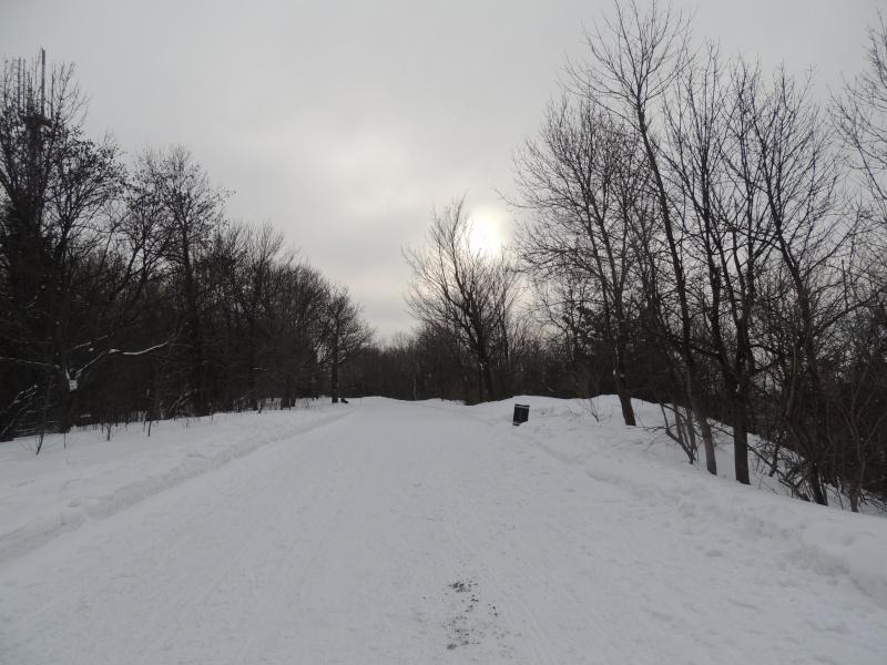 TR Montreal + New York du 19 Janvier au O6 Février 2O13 - Page 8 Dscn1317