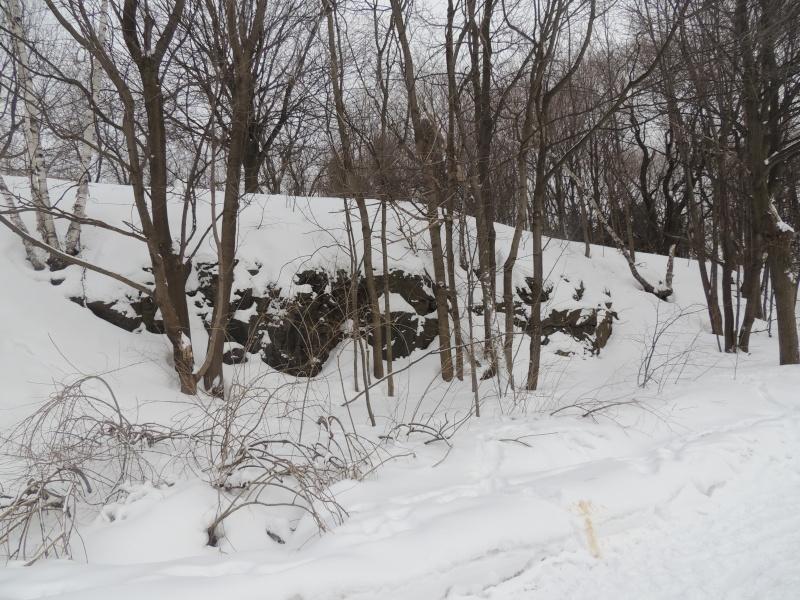 TR Montreal + New York du 19 Janvier au O6 Février 2O13 - Page 8 Dscn1318