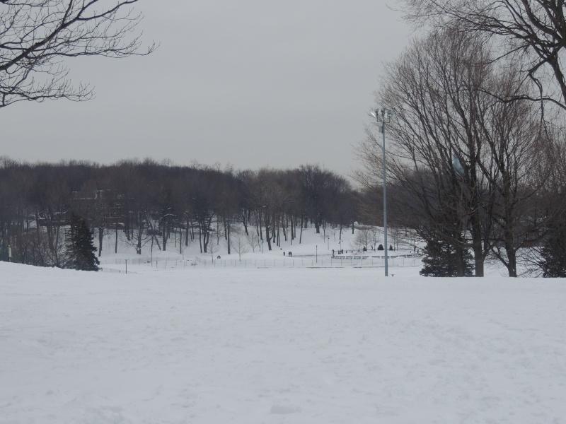TR Montreal + New York du 19 Janvier au O6 Février 2O13 - Page 8 Dscn1325