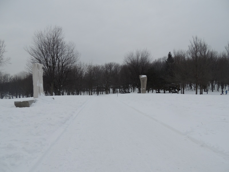 TR Montreal + New York du 19 Janvier au O6 Février 2O13 - Page 8 Dscn1326