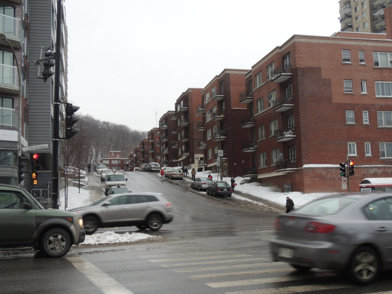 TR Montreal + New York du 19 Janvier au O6 Février 2O13 - Page 8 Dscn1327