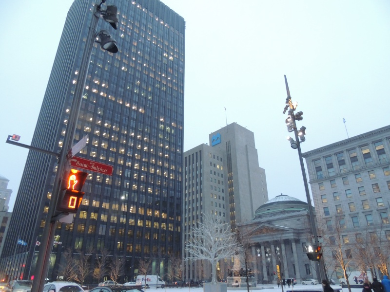 TR Montreal + New York du 19 Janvier au O6 Février 2O13 - Page 8 Dscn1369