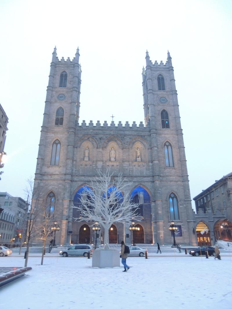 TR Montreal + New York du 19 Janvier au O6 Février 2O13 - Page 8 Dscn1374
