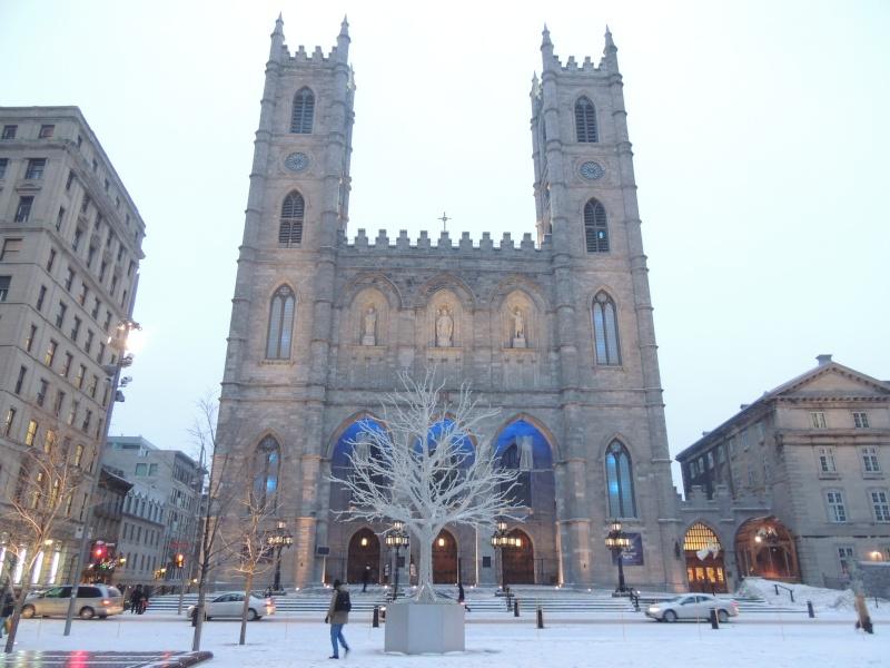 TR Montreal + New York du 19 Janvier au O6 Février 2O13 - Page 8 Dscn1375