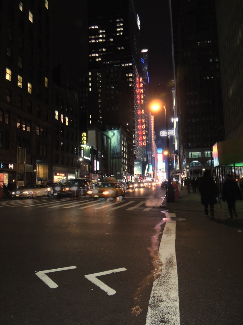 TR Montreal + New York du 19 Janvier au O6 Février 2O13 - Page 9 Dscn1530