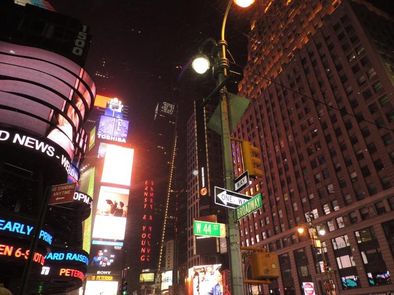 TR Montreal + New York du 19 Janvier au O6 Février 2O13 - Page 9 Dscn1655