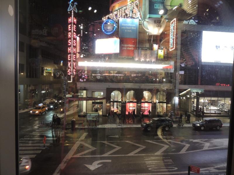TR Montreal + New York du 19 Janvier au O6 Février 2O13 - Page 9 Dscn1735